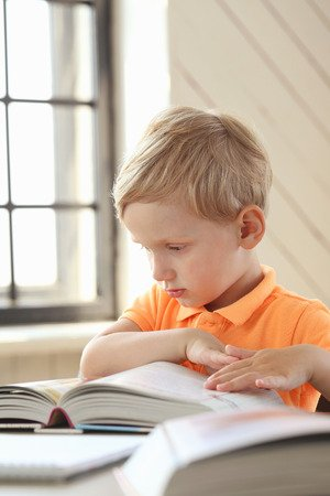 Ontdekkend leren lezen - Hoofdkenmerken