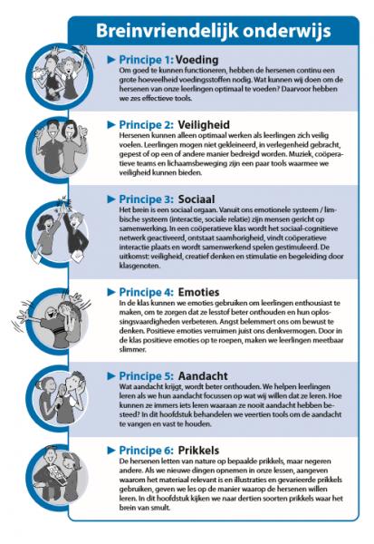 Breinvriendelijk onderwijs - Zes principes