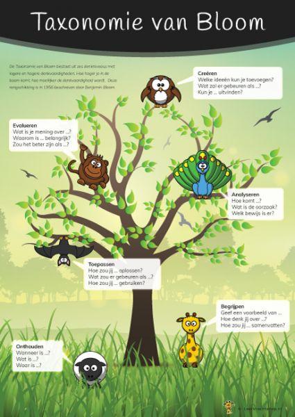 Poster Taxonomie van Bloom